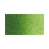 Sap green 623.