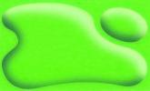 355 Leaf Green